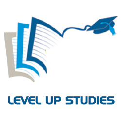 Level Up Studies